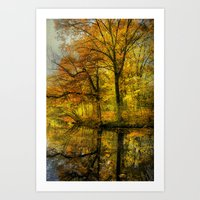 Fall Colors Of New Engla… Art Print