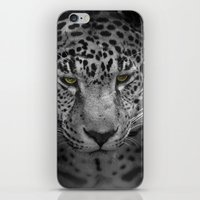 An Intense Stare - Wildlife - Leopard iPhone & iPod Skin