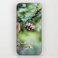 Little Cone iPhone & iPod Skin