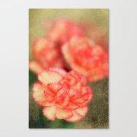 Concrete Carnation Canvas Print