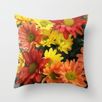 Red, yellow and orange colorful autumn daisy flowers. floral photography. Throw Pillow