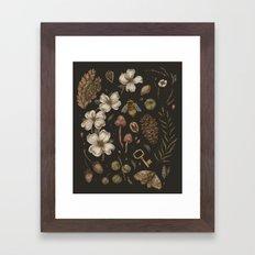 Nature Walks Framed Art Print