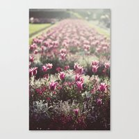 Paris Flowers Canvas Print