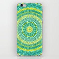 Mandala 423 iPhone & iPod Skin