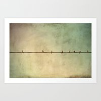 Sparrows On Wire Art Print