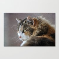 Cassie's Portrait Canvas Print