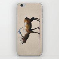 The Rocky Mountain Elk iPhone & iPod Skin