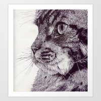 Big Cat Art Print