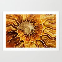 Art Print featuring AMAZING AMMONITE by Catspaws