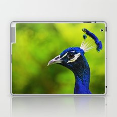 Pretty as a Peacock I Laptop & iPad Skin