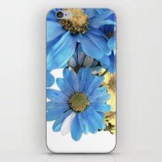 Faded Flowers iPhone & iPod Skin