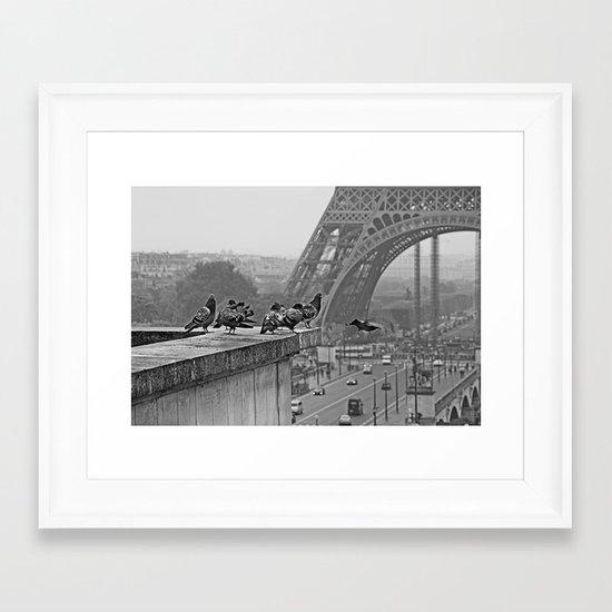 pigeons parisien Framed Art Print