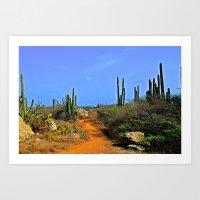 Desert Pathway Art Print