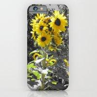 Sunflower 1 iPhone 6 Slim Case