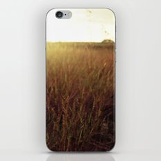 Sweet Sunset iPhone & iPod Skin
