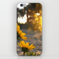 Sonnen iPhone & iPod Skin