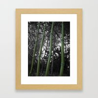 What Would You Do For Bamboo? Framed Art Print