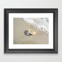Washed Up Seashell. Framed Art Print