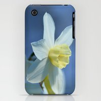 iPhone 3Gs & iPhone 3G Cases featuring Daffodil in Spring by Lena Photo Art