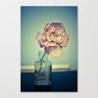 Pretty Flower 1 Canvas Print