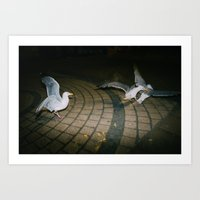 Seagulls of Anarchy Art Print