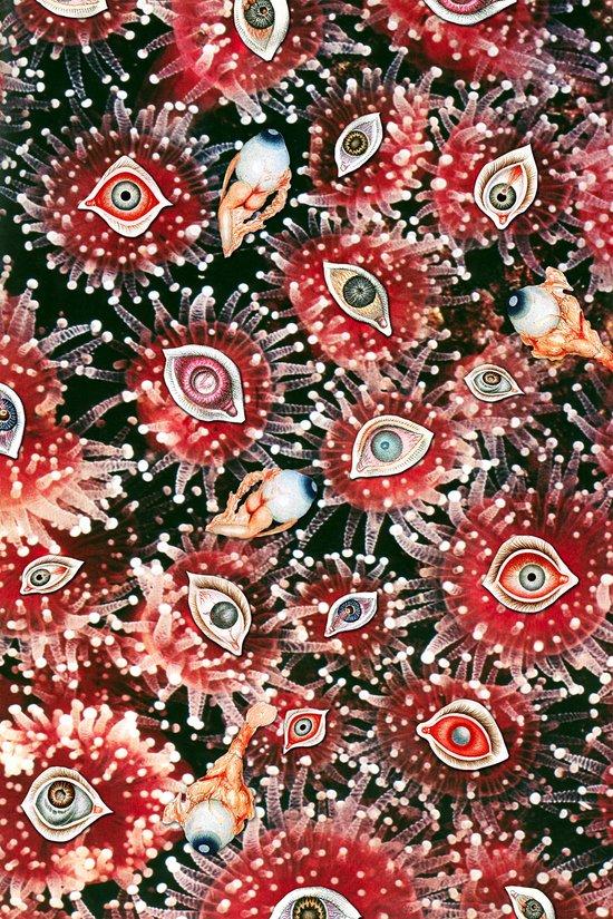Cataracts Canvas Print