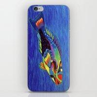 Rainbow Parrot Fish iPhone & iPod Skin