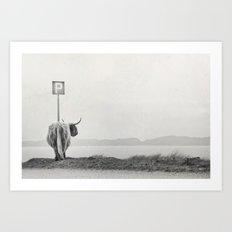 Highland Visitor Art Print
