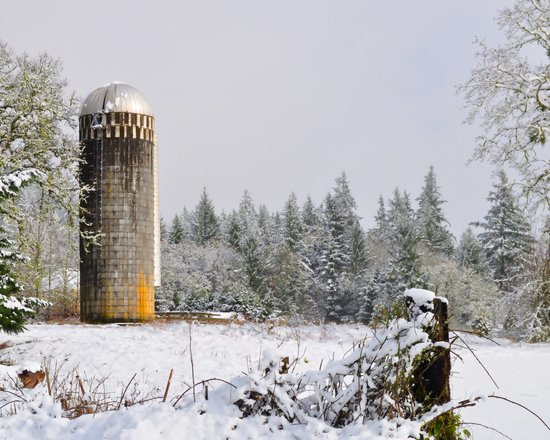 Remnants of a Simpler Time - The Silo Art Print