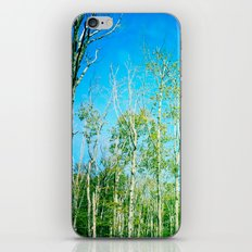 from the root up iPhone & iPod Skin