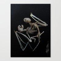 Siamese Bat Canvas Print