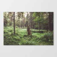Primary forest Canvas Print