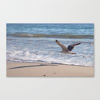 Fly Away Gull 6956 Canvas Print