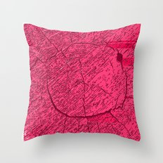 QASD213 Throw Pillow