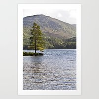 The Lonely Tree Art Print