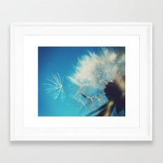 Dandelion Photograph Framed Art Print