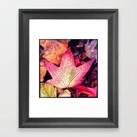 Fall At River Oaks Framed Art Print