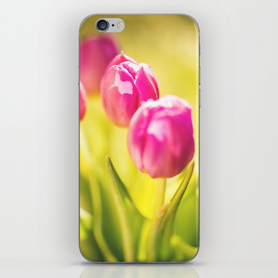 spring tulips flower iPhone & iPod Skin