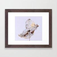 Delicate  - JUSTART © Framed Art Print