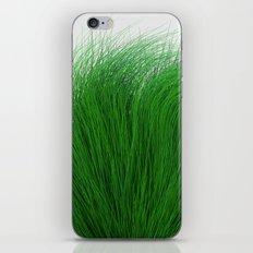 Green Fuzz iPhone & iPod Skin