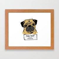 Pug Shot Framed Art Print
