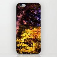 Yellow fall leaves iPhone & iPod Skin