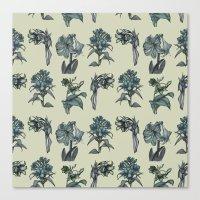 Botanical Florals | Vintage Blue Canvas Print