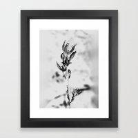 Standing Here On My Own … Framed Art Print