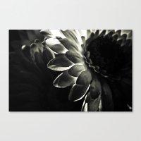 Weave Canvas Print
