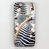 Abstract Zebras iPhone & iPod Skin