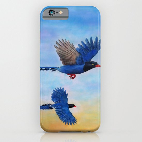 Taiwan Blue Magpies (2) iPhone & iPod Case
