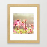 Sun Kiss Daisies Framed Art Print