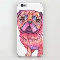 Pugberry iPhone & iPod Skin