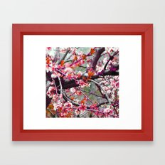 it maybe summer, it maybe spring, i can't remember_2 Framed Art Print